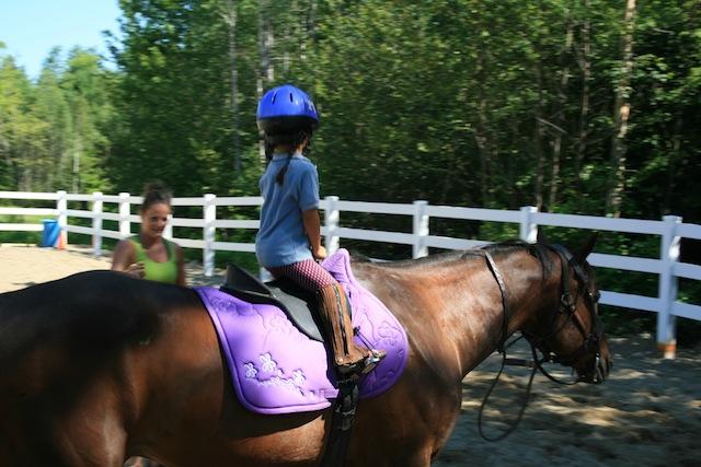 Horse Lesson 5