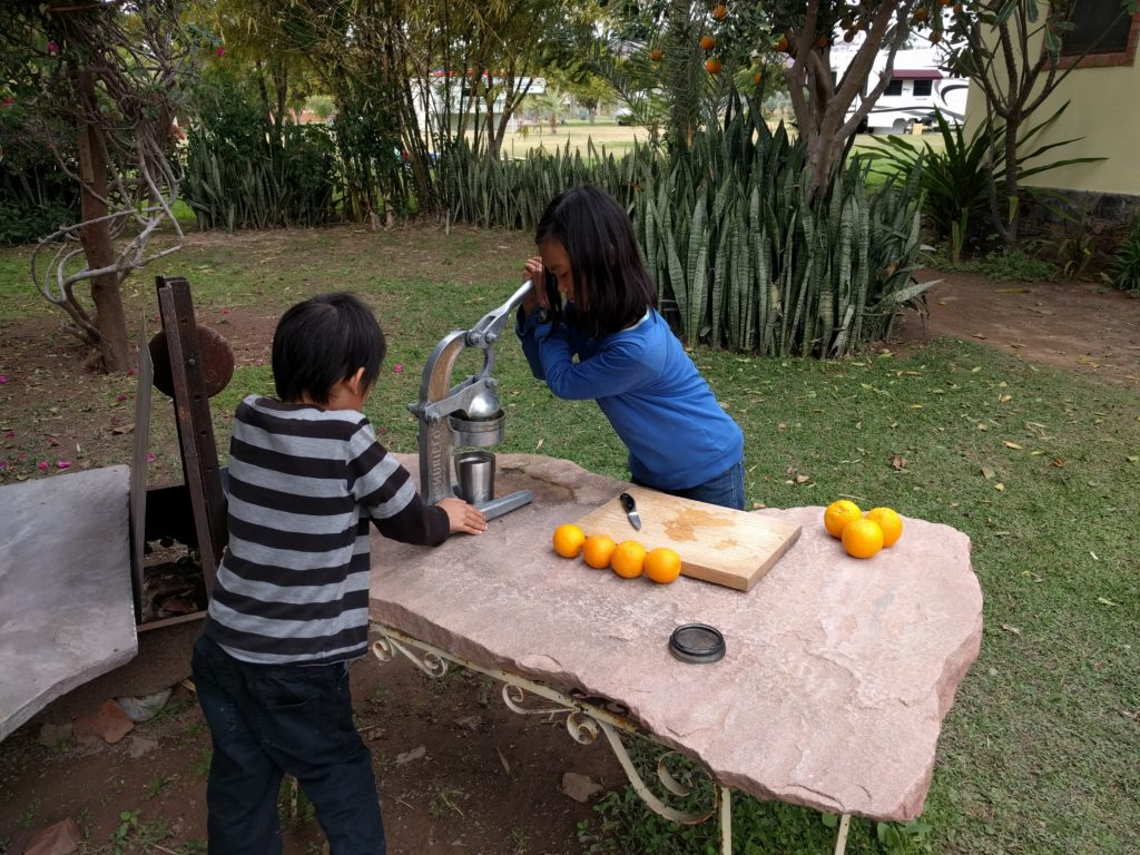 Fresh squeezed orange juice in Mulege.