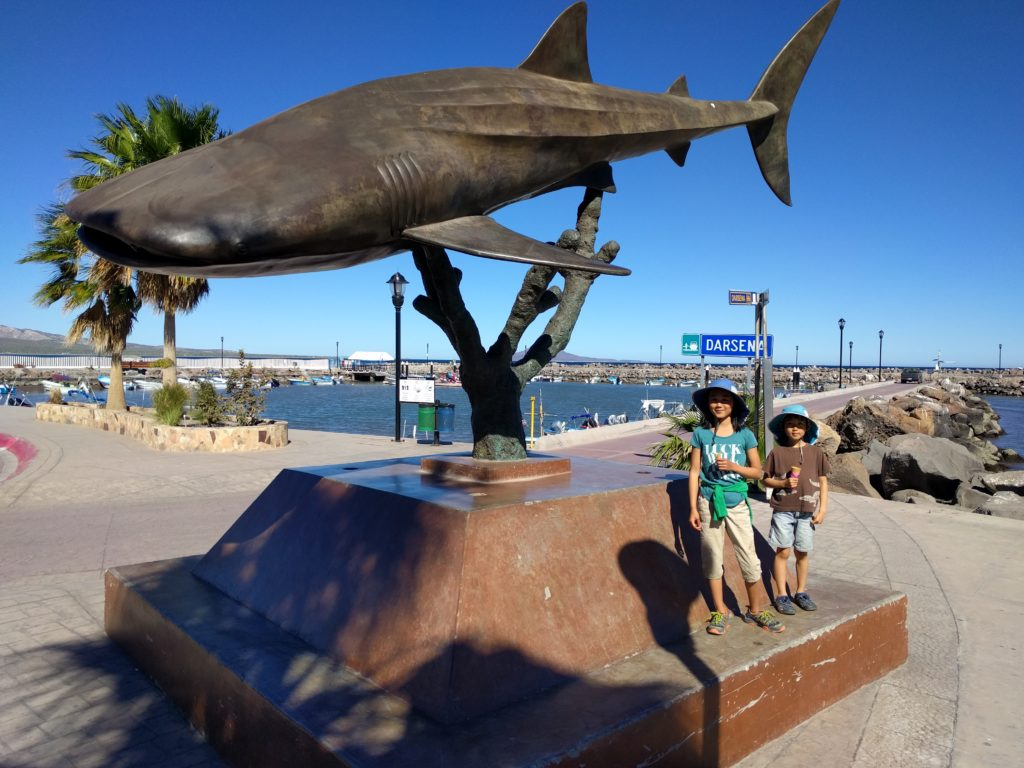 Whale shark statue.